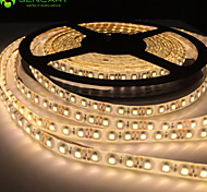 5M 30W 300x2835SMD LED White / Blue / Red / Warm White / Yellow / Green /  Cold White LED Light Strips DC12V