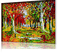 DIY Digital Oil Painting  Frame Family Fun Painting All By Myself  In The Fall Of The Forest X5029