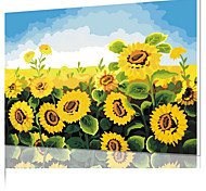 DIY Digital Oil Painting  Frame Family Fun Painting All By Myself      Sunflower X5002