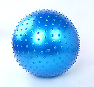 Also Kang Unisex Fitness Ball PVC 0.65 M Blue