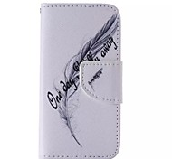 Black Feathers Painted PU Phone Case for iphone5C
