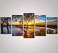Пейзаж Отдых Цветочные мотивы/ботанический Фото Modern Традиционный,5 панелей Горизонтальная С картинкой Декор стены For Украшение дома