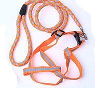 Pet Reflect Light Leashes(Random Color)