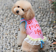 Exquisite Lace Pet Dress