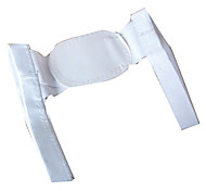 Back Supports Manual Shiatsu Support Adjustable Dynamics Acrylic 1