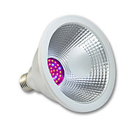 E27 Waterproof Led Grown Lights 15W 110V 220V 240V AC For Flower Plant Red and Blue Color