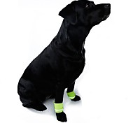 Orange/Yellow Dog Walking Safety Wristband for Pets Dogs(Assorted Sizes and Colours)