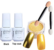 5pcs/set Shinning Mirror Nail Glitter Powder Black UV Gel Nail Art Chrome Pigment Kit with Brush