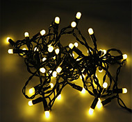 5M-50 Lights Led Christmas Bullet String Light