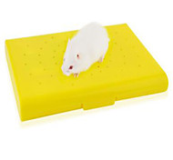 Rodents Beds Ice Cool Pad Rubber Random Color