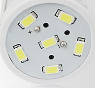 10W LED a pannocchia T 42 Illuminazione LED integrata 800-1000 lm Bianco Decorativo 110-120 V 1 pezzo