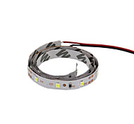 ® Shenmeile Flexible LED Light Strips 100 lm DC12 1 m 60 leds Warm White White Red Blue Green