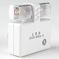lyssensor 1w hvidt lys førte nat lampe (220V)