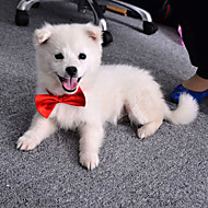 katten honden Stropdas/Vlinderdas Hondenkleding Zomer Lente/Herfst Strik Schattig Bruiloft Oranje Paars Rood Blauw Roze