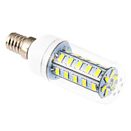 E14 9 W 36 SMD 5630 760 LM Cool White Corn Bulbs AC 220-240 V