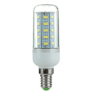 E14 3.5W 350LM 6500K 36-SMD 5730 ha condotto la lampada fredda mais luce bianca (220v ~ 240v)