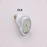 Spot Blanc Froid A E14 7 W 15 SMD 5630 650 LM AC 85-265 V