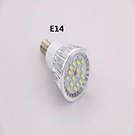 E14 7 W 15 SMD 5630 650 LM Kjølig hvit A Spotlys AC 85-265 V