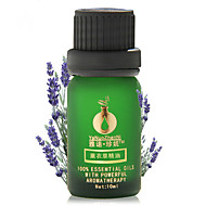 Help Sleep Lavender Essential Oil 10ml