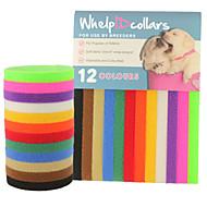 Gatos Perros Cuello Etiquetas de Identificación Ajustable/Retractable Sólido Arco iris Nilón