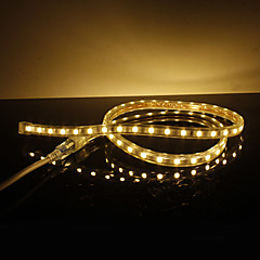 Waterproof 10W/M 5050 SMD Warm White Light LED Strip Lamp (220V, Length Selectable)