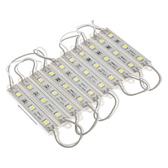 Waterproof 0.6W 5050SMD Natural White Light LED Module (DC 12V, 10pcs)