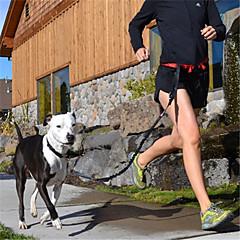 pethingtm fashionable udendørs nylon håndfri snor med bælte til kæledyr hunde (assorterede farver)