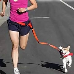 Köpekler Eller Serbest Tasma Ayarlanabilir/İçeri Çekilebilir / Koşma / El Kullanılmadan Tek Renk Kırmızı / Beyaz / Yeşil / Pembe / Mor