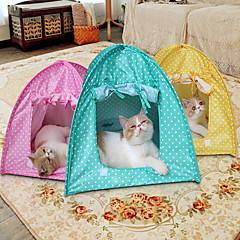 Γάτα Σκύλος Σκηνή Σκηνή Πράσινο Ροζ Κίτρινο Τερυλίνη