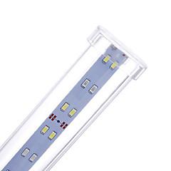 Akvaariot LED-valo Valkoinen LED-lamppu