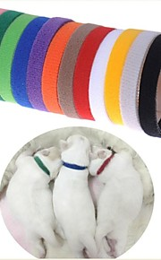 FUN OF PETS® Muti-Colors Brightly Colourful WhelpIDcollars for Pets Dogs & Cats (Assorted Sizes)