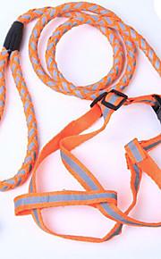 犬用品用-ナイロン-リード-レッド / ブラック / グリーン / ブルー / オレンジ