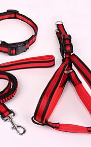 כלבים קולרים / רתמות / רצועות בטיחות פס Red / כחול בד