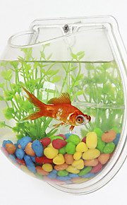 Mini Aquariums Background Mini Wall Fish Tank Plastic White Green Transparent