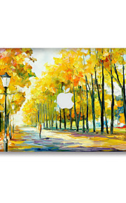 For MacBook Air 11 13/Pro13 15/Pro with Retina13 15/MacBook12 Oil Painting Wood Decorative Skin Sticker Glow in The Dark