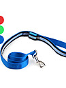 Dog Leash LED Lights Red / Green / Blue Textile