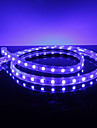 Vanntett 10W / M 5050 SMD Blue Light LED Strip lampe (220V, Lengde valgbar)