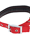 High Quality Nylon Adjustable Dogs Collar (S-L,Assorted Color)
