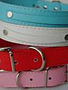 Caes Colarinho / Trelas Vermelho / Preto / Branco / Azul / Rosa Pele PU