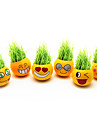 Diy Smiling Face Grass Planting Doll Yellow(Assorted Patterns)