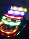 LED Neon Light Stylish Safeguard NylonCollar for Pets Dogs (Assorted Colors, Sizes)