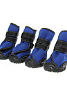 Dog / Cat Socks & Boots & Sneakers Black / Blue Spring/Fall Waterproof