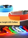Dog Collar LED Lights / Adjustable/Retractable Red / Green / Blue / Pink / Yellow / Orange Nylon