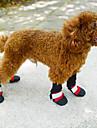 Perros Calcetines y Botas Rojo / Negro / Azul / Rosa Invierno A Prueba de Agua-Doglemi