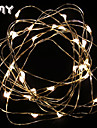 GMY Christmas Light  Copper Wire String light