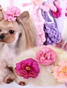Cat / Dog Hair Accessories / Hair Bow Pink / Rose Dog Clothes Spring/Fall Wedding / Cosplay