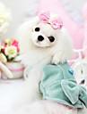 Коты / Собаки Плащи Зеленый Одежда для собак Весна/осень Бант Мода