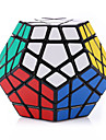Shengshou® Smooth Speed Cube Megaminx Magic Cube Black Plastic