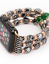Agate design corde cordon bande agate pour bracelet montre Apple avec adaptateur de connexion