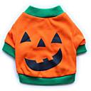 honden T-shirt Oranje Hondenkleding Zomer / Lente/Herfst Doodskoppen Halloween /